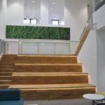 Sitztreppe mit Ganzglasgeländer